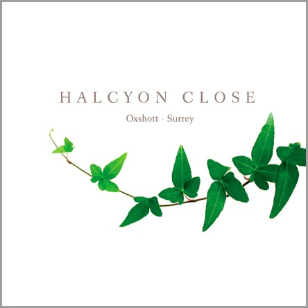 Halcyon Close